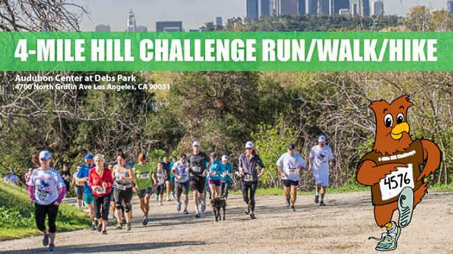 One General Admission entry to the 4-Mile Hill Challenge Run/Walk