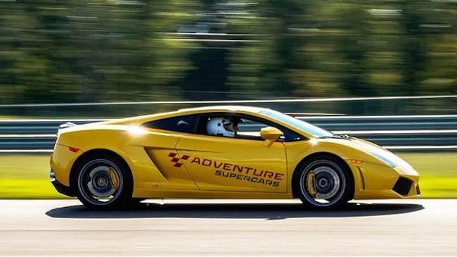 Drive three laps in a Nissan GTR
