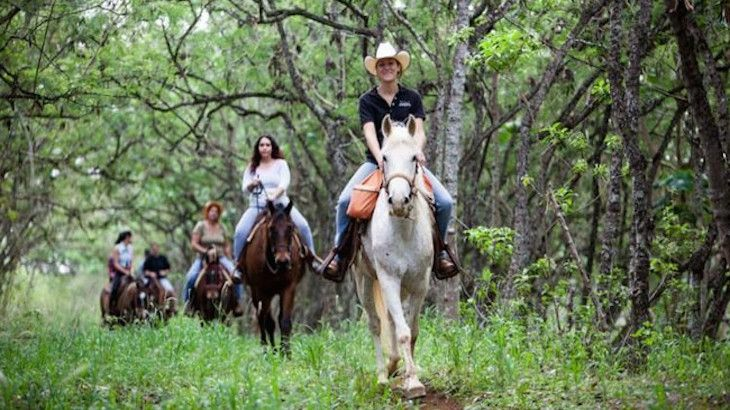 90-Minute Scenic Horseback Ride