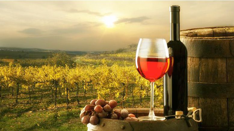 For one ticket to Baja Wine Tours from San Diego