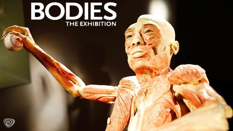 Bodies exhibit discount coupons
