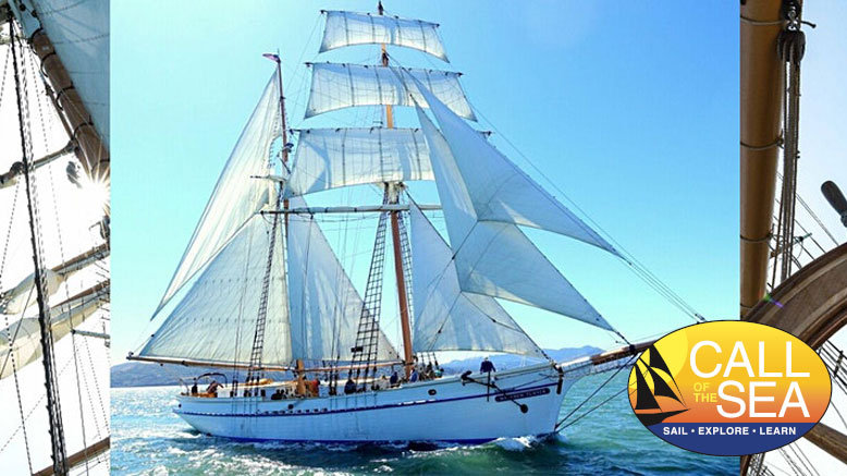 1 Community Day Sail Adult Ticket (Ages 12+)