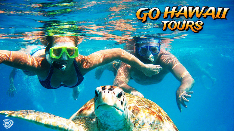 Oahu in 1 Day + Turtle Snorkeling Package