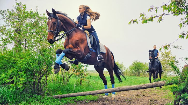 One 30-Min Private Beginner Riding Lesson