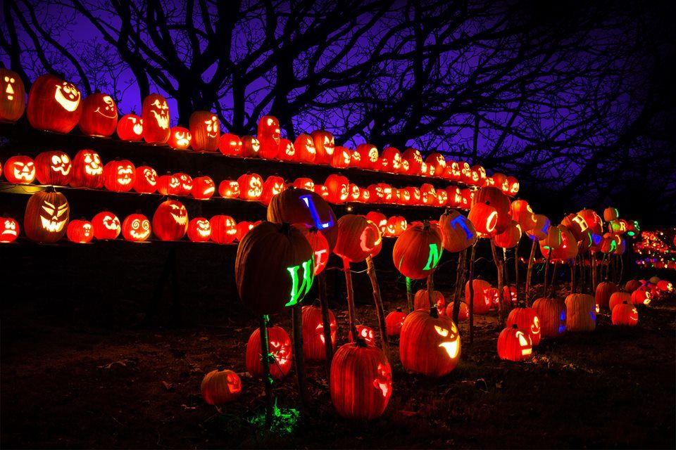 The Rise Of The Jack O Lanterns Discount Tickets Rush49