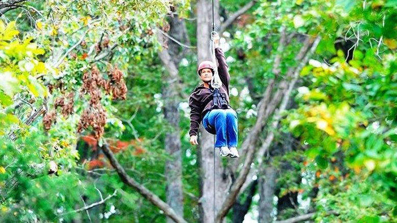 Zipline Tour & Mammoth Cave Drop For 1