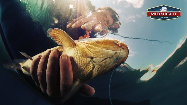 Full Day of Fishing For 1 - Valid Any Day from 8:30 AM - 2:30 PM