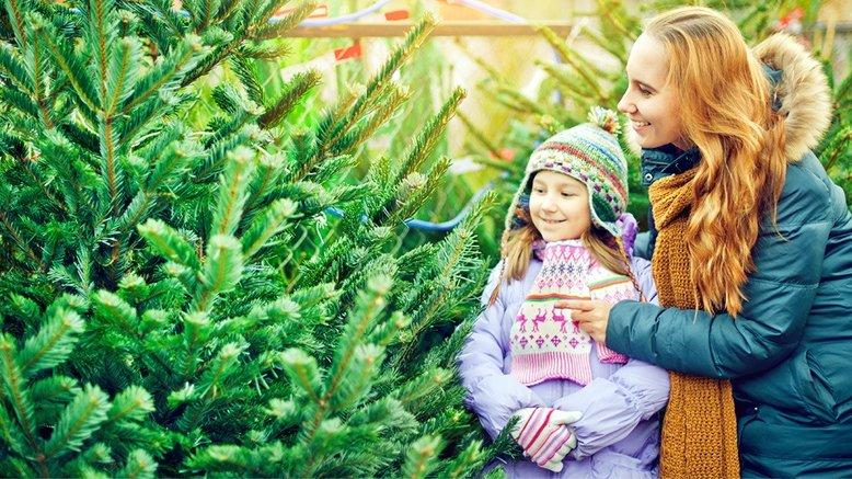 1 christmas tree 5 7ft