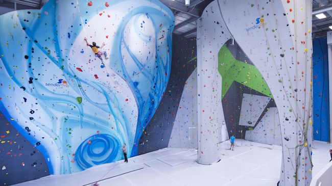 Intro to Climbing Class for One
