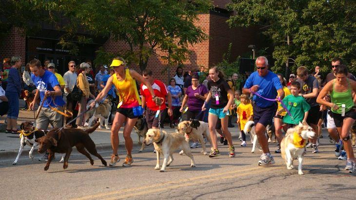 pet walk jog run discount tickets deal rush49