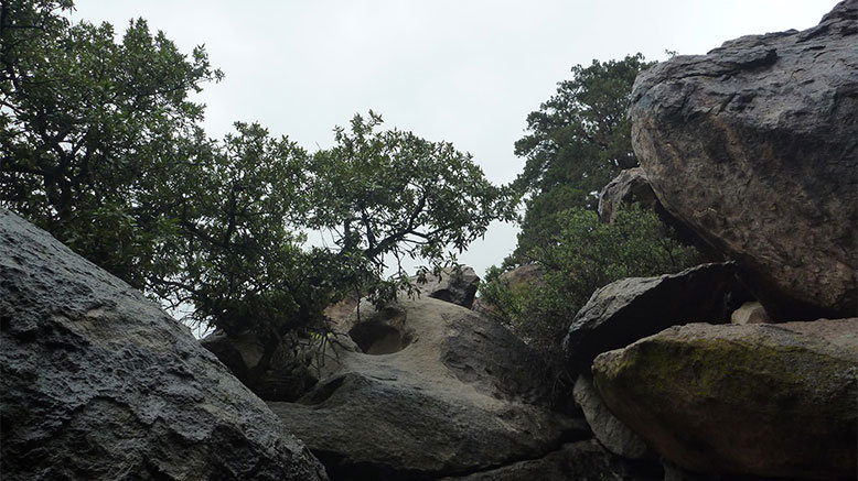 Private 4-Hour Bouldering Tour for 1