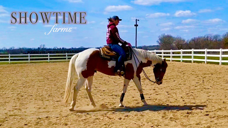 One 30-Minute Horseback Riding Lesson